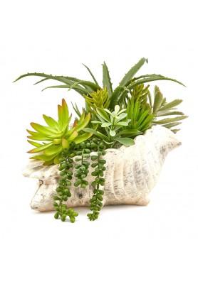 Composizione Pianta Succulent Artificiali Vaso Conchiglia EDG - Linea Green