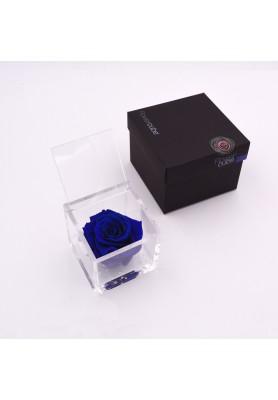 Rosa Blu Media - Linea Flowercube