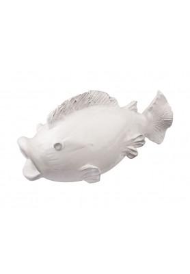 Deco Pesce Medio - Linea Marina
